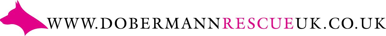 Dobermann Rescue UK and Europe